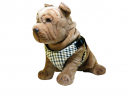 Checkered Vest Harness -CVH-003-L